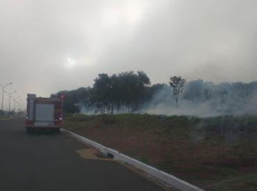 Incêndio de grandes proporções atinge mata na região da Guaicurus